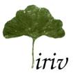 Iriv conseil (partenaire français du projet)